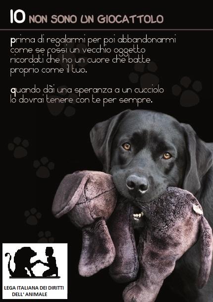 no cane regalo