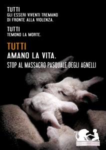 stop-al-massacro-pasquale-degli-agnelli1
